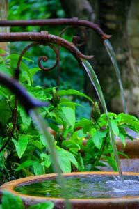 water-garden-01