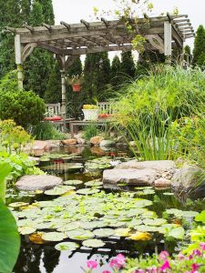 water-garden-04
