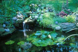 water-garden-05