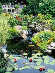 water-garden-09