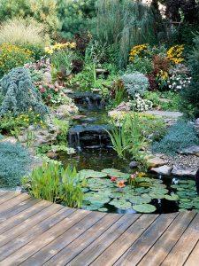 water-garden-10