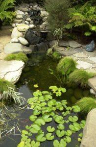 water-garden-12