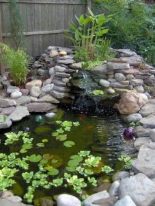 water-garden-13