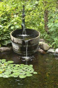 water-garden-14
