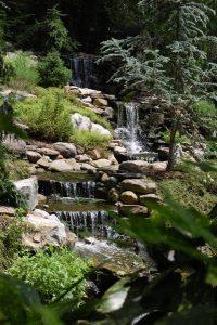 water-garden-23