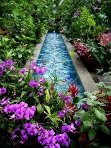 water-garden-24