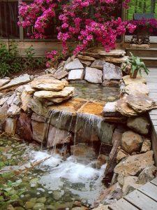 water-garden-25