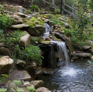 water-garden-27
