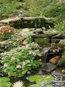 water-garden-28