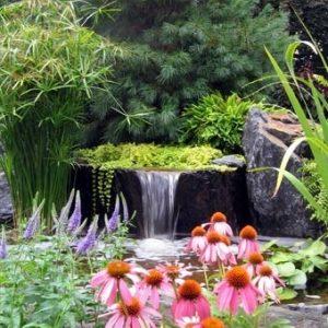 water-garden-30