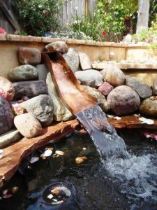 water-garden-31