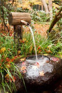 water-garden-32