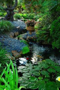 water-garden-33