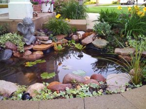 water-garden-38