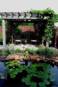 water-garden-43