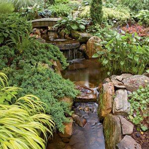 water-garden-44