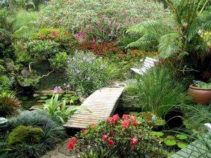 water-garden-45