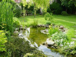 water-garden-49